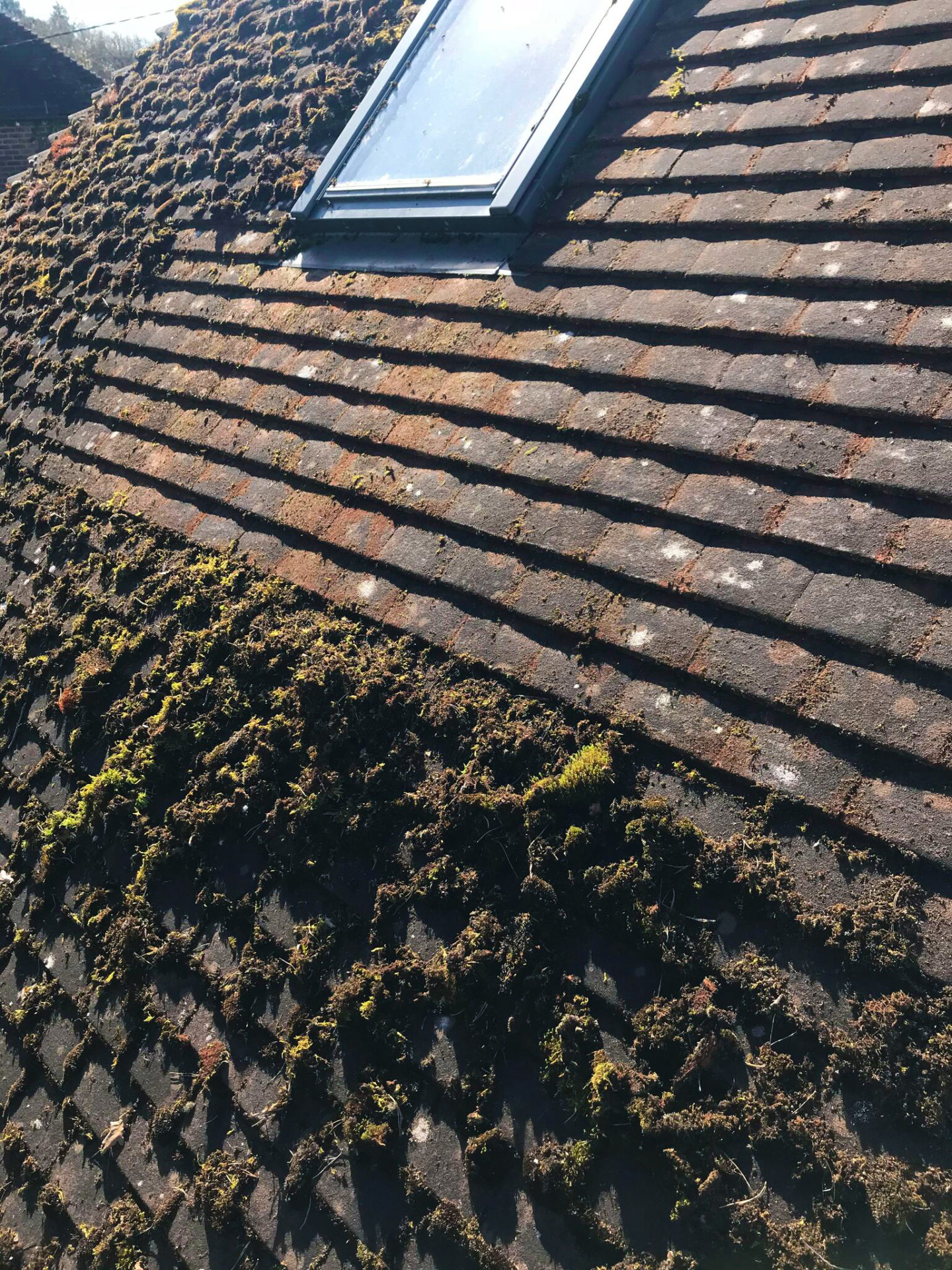 Roof Cleaning Cleaning 4 U